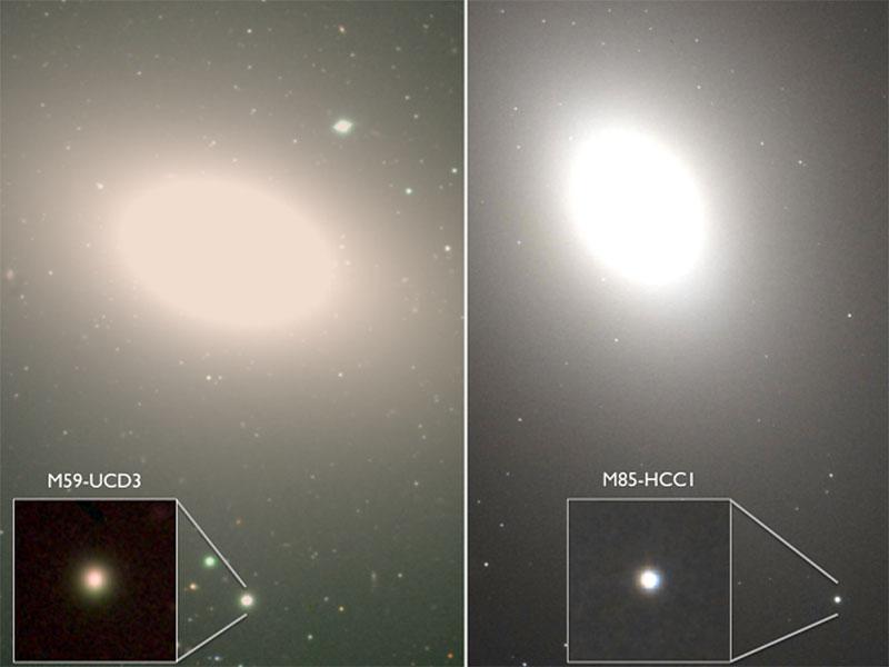 Две суперплотные карликовые галактики