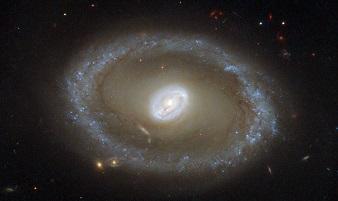 снимок галактики ngc 3081