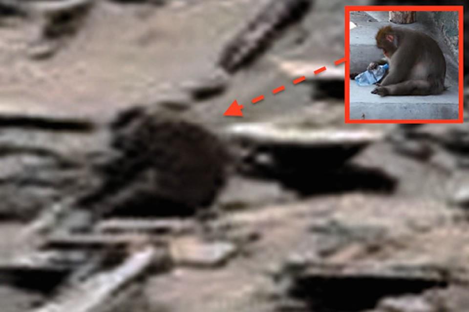 Уфологи выдвинули теорию - исследование Марса вымысел