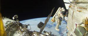 Icarus – проект по наблюдению за животными из космоса