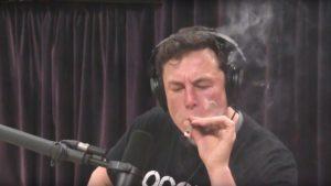 Илон Маск отправит на МКС партию семян каннабиса